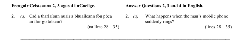 2008 LC Higher Reading Comprehension Q2a