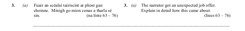 2010 LC Higher Reading Comprehension Q3a