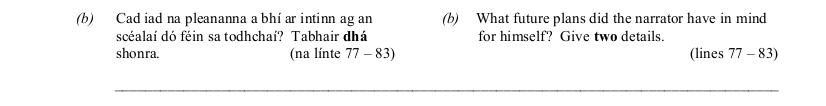 2010 LC Higher Reading Comprehension Q3b